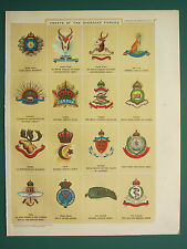 1920 PRINT ~ CRESTS OF OVERSEAS FORCES CANADA NEW ZEALAND MEDICAL HONG KONG etc