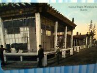 VINTAGE POST CARD ANIMAL CAGES WOODLAND PARK ZOO SEATTLE WASHINGTON