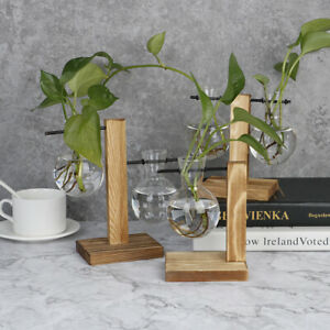 Terrarium Table Desktop Hydroponics Plant Bonsai Flower Pot with Wooden TraYXTA