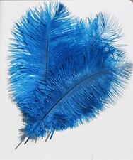 Ostrich Feathers (Pack of 5) Turquoise coloured Feathers 30 cms long