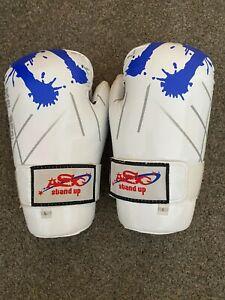 Ray Daniels Taekwondo adult fight worn signed gloves size L