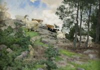 """perfact 36x24 oil painting handpainted on canvas """"sheep""""N5455"""