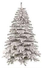 White Christmas Trees