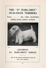 "SEALYHAM TERRIER OLD VINTAGE 1934 DOG PRINT PAGE "" CHAMPION ST MARGARETS SERENE"