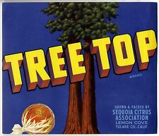 TREE TOP~TWIN SEQUOIA TREES~1940s LEMON COVE CALIFORNIA ORANGE FRUIT CRATE LABEL