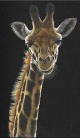 Giraffe t-shirt youth adult toddle school beautiful boy girl men women US size 2
