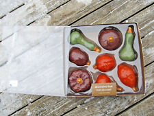 Lot of 8 Pier 1 Decorative Fruit for Display Decor Kitchen Table Bowl Free ship