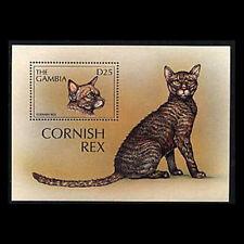 Gambia, Sc #1966, Mnh, 1997, S/S, Cats, Cornish Rex, A350Ihi