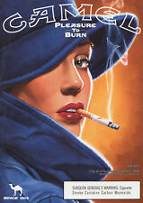 Reproduction Vintage Cigarette Poster, Camel - Pleasure To Burn, Wall Art