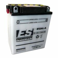 BATTERIA ENERGY SAFE BMW F GS DAKAR (R13) 650 01 > 07 ESB12AL-A
