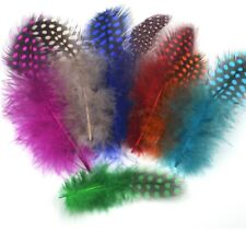 """COLOUR SPOTTY DIP DYED 2-5"""" 5 -12 cm ROOSTER FEATHERS POLKADOT CRAFT COSTUME HAT"""