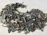 Tea, White Camellia sinensis (bai mu dan) ~ Sacred Herbs from Schmerbals Herbals