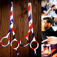 Set Professional Salon Hair Cutting Color Scissors for Hairdressers Barber 2 Pcs