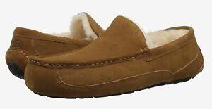 Ugg Ascot Black, Chestnut, Espresso Suede 1101110 Men's Slipper Shoes