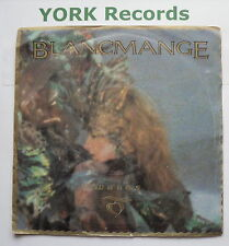"BLANCMANGE - Waves - Excellent Condition 7"" Single London BLANC 4"