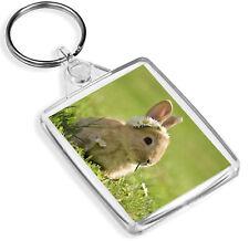Beautiful Baby Bunny Keyring -IP02- Rabbit Daisy Flower Bunnies Cool Gift #15575