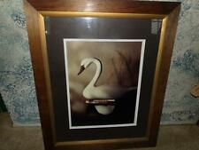 James A Warner buck's swan Chesapeake MD art gallery framed art work