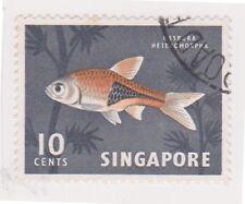 (K65-252) 1962 Singapore 10c Harlequin fish (F)