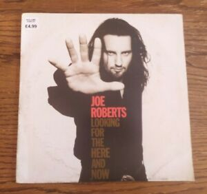 Vinyl LP Joe Roberts Looking For The Here And Now 1994 FFRR Promo EX/VG