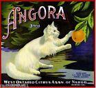 Ontario Narod Angora White Cat Kitten Orange Citrus Fruit Crate Label Art Print