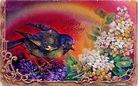 Best Wishes~BIRD BASKS IN VIOLETS~RAINBOW~GOLD Emboss Antique Postcard~Germany