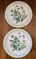"Set of 2 Studio Nova Garden Bloom by Mikasa Dinner Plates, 10 7/8"" Y2372"