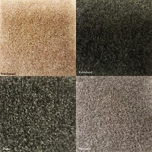 Clearance   New Carpet Cheap Bedroom Steps Livingroom Felt Backed 4m Carpets
