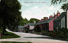 Tilgate Forest Row near Crawley by London View Co.
