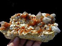 Red Garnet Crystals & Smoke Quartz Cluster on Matrix Mineral Specimen!