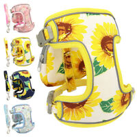 Small Dog Harness and Leash Set Reflective Pet Walking Vest Padded w/ Snack Bag
