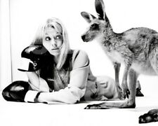 Skippy the Bush Kangaroo (TV) Liza Goddard 10x8 Photo