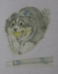 Flyball Collie T-Shirts Sizes 3-6 months to XXL  Designs from original artwork