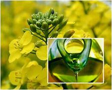 Camelina Sativa oil, UNREFINED, NATURAL Organic cold pressed, 500 ml