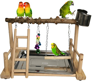 Parrot Playground Bird Playstand Wood Exercise Play Perch Exercise Gym