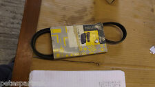New Genuine Renault Megane I V Belt   7700862173  R54