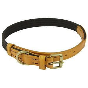 Tan English Bridle Leather Dog Collar Brown Webbing and Polished Brass