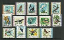 MONTSERRAT SG242-254C BIRDS SET MNH