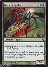 MTG - Ravnica - Goliath Spider - Foil - NM
