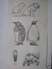 ANIMAL STUDIES PENGUIN LION  FRANKLYN  ROGERS INK C1940