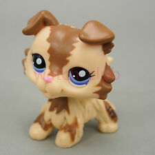Littlest Pet Shop Collection Collie Dog #2210 Puggy Puppy Rare Cute Loose