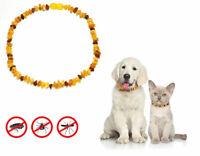 100 %Baltische Bernstein Halsband Kette für Hunde / Katzen roh Amber. ca.35 cm.
