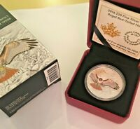 Canada 2016 $20 Regal Red-Tailed Hawk Silver Coin w/ box & COA #2,207 of 6,500