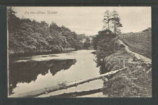 1920s On The Allan Water England Postcard