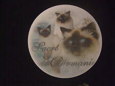 Tapis de souris - MOTIF - CHAT SACRE DE BIRMANIE