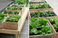 1 x 12 BOTTLE LARGE FRENCH WOODEN WINE CRATE / BOX IDEA GARDEN PLANTER INDOOR