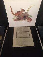 """Vintage 1975 Louise Brevoort Signed Print #532/1000 """"Eastern Chipmunks"""" 13""""X14"""""""