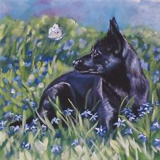 black Australian KELPIE dog canvas art PRINT of LaShepard painting LSHEP 8x8