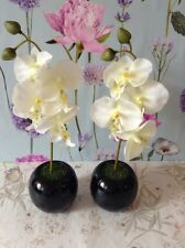 Two Artificial White  Orchid Flower Arrangement In Pair Of Black Ceramic Round