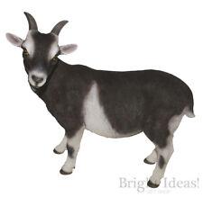 Vivid Arts - REAL LIFE GOATS - Goat Farm Animals