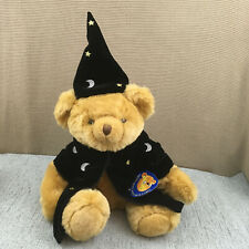 """Bear Factory Teddy Bear Soft Toy in Wizard Outfit 12"""""""